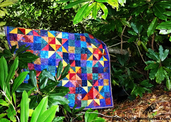Twinkle, a pattern by Swirly Girl Designs, was made because I had some fabulous leftover fabric