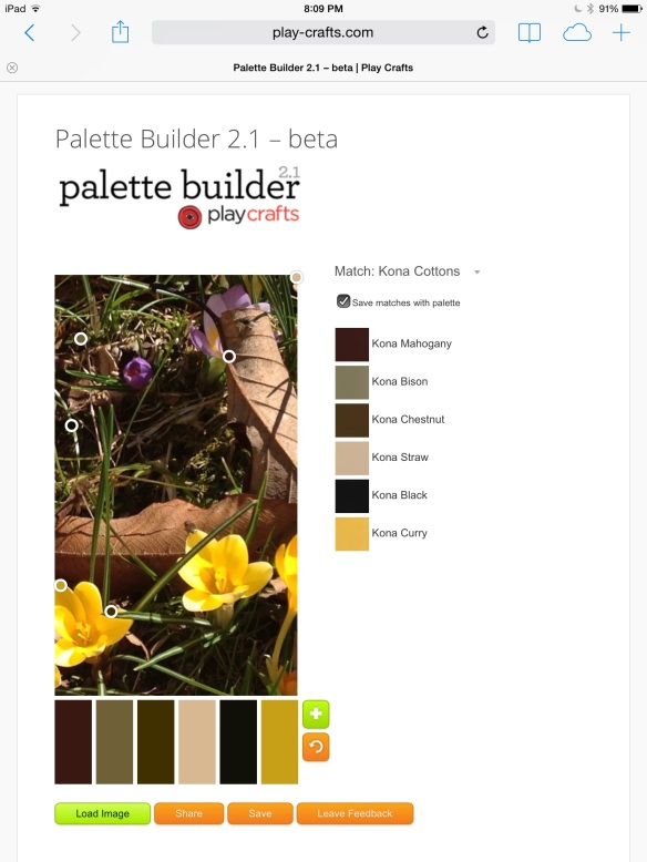 screen shot from Palette Builder