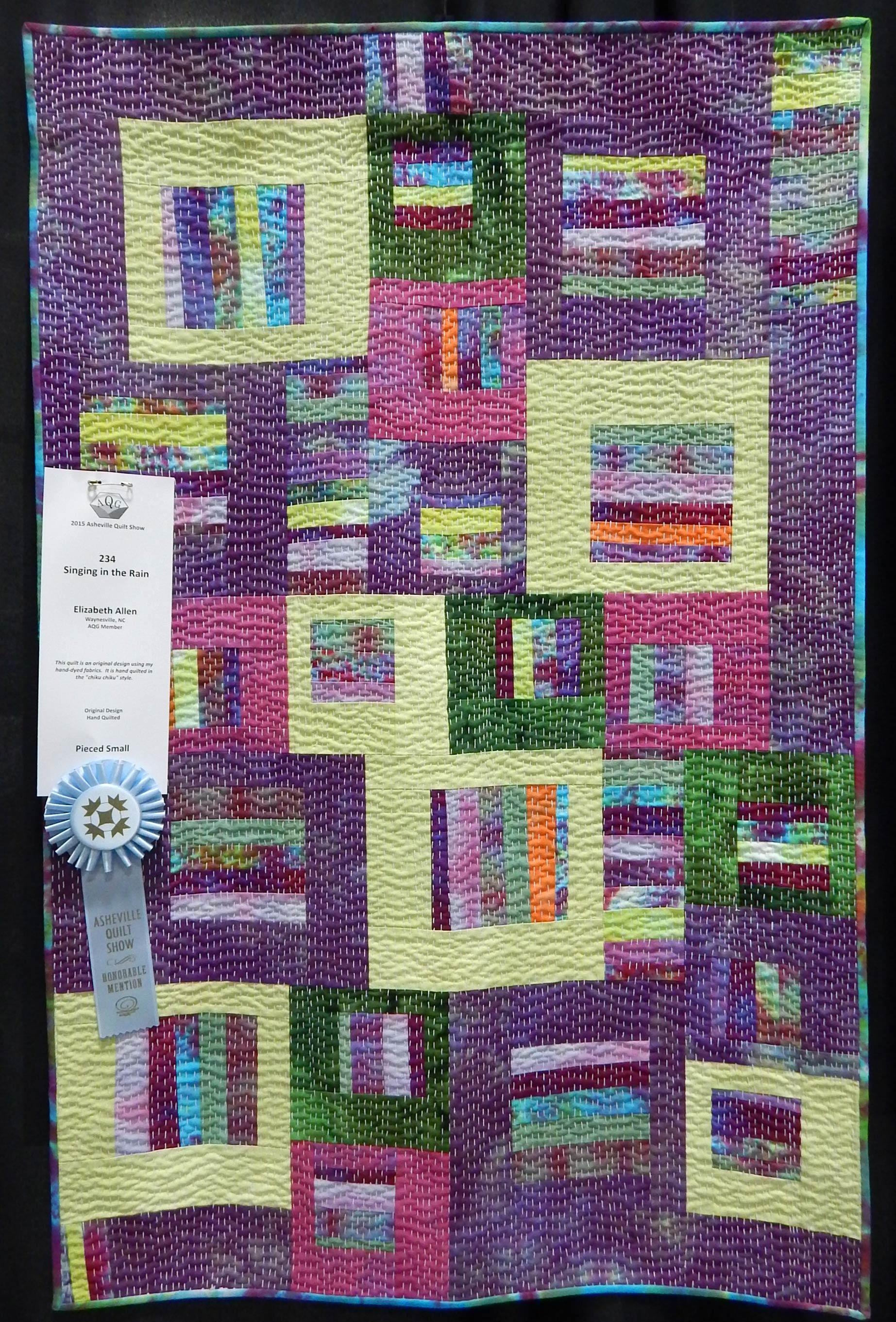 Asheville Quilt Show 2015 Zippy Quilts