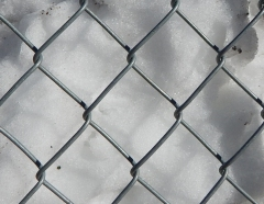 Fence-2