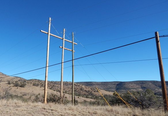 Guy lines from the poles keep them stable, and the poles carry lines for power and telephone service in this rural area
